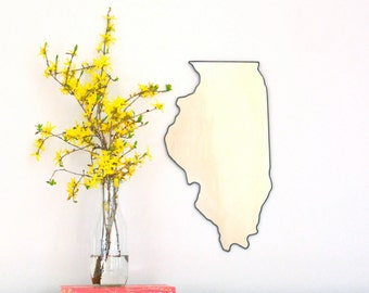 Illinois Mirror Wall Mirror State Silhouette Outline IL Chicago Shape Wall Art Miroir
