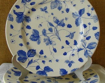 2 VINTAGE Plates Royal Stafford Fine Earthenware England 2 Large Blur & White Floral Plates Cottage Chic Plates English China Plates