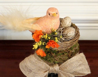 Bird Seed Mason Jar Favor with Bird Nest
