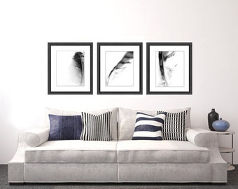 Feather Photo Set, black and white photo, wall art, abstract photography, black and white art print photo set home decor wall decor