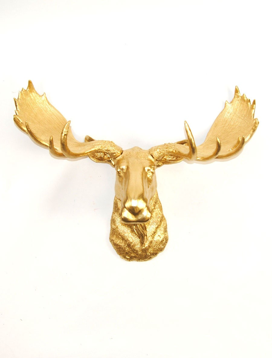 Faux taxidermy moose head in gold the elcide chic and - Fake moose head ...