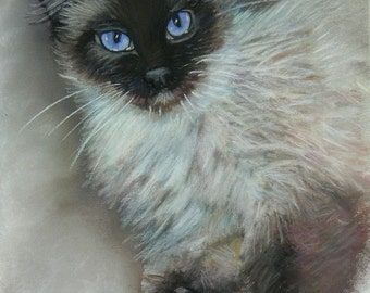 Siamese Cat Art, Siamese Cat Print, Siamese Cat Gift
