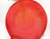 Tomatoes Watercolors Paintings original , Cherry and Slicer tomatoes, kitchen decor, 4 x 6, Food Art, kitchen wall art, original watercolor