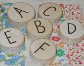Alphabet Branch Tree 30 Piece Waldorf Inspired Set