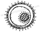 Thermofax Screen - Circle Motif 1