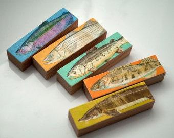 Fishing Decor- Fishing Gift for Dad- Fish Sticks Freshwater Fish Art Block Set of 5 Fisherman Gift- Unique Dad Gifts- Lake House Fish Art