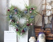HEART wreath no.3  // air plant tillandsia