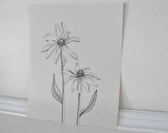 Original Ink Drawing, Black eyed Susan Botanical Drawing, Summer Flower, Pen and Ink, Black on Cream, Daisy Art, Flower Illustration 8 x 10