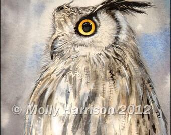 Eagle Owl - Original Watercolor Giclee Print Wildlife Art 8 x 10 - Owl Painting - Owls