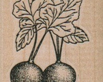 Rubber stamp mounted radish plant    stamp   number 12975   summer garden