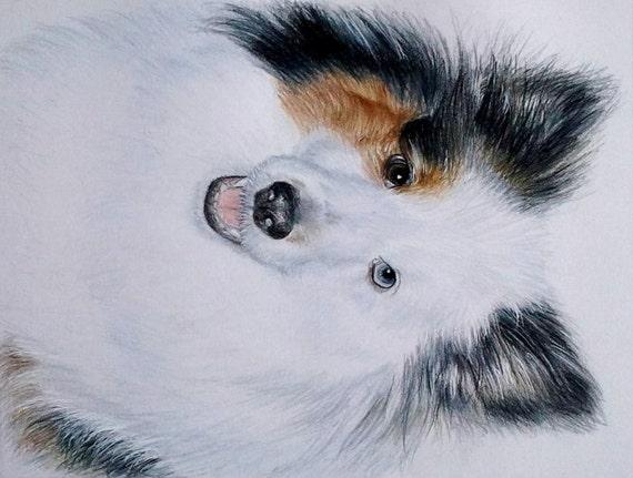 Hand-Drawn Custom Pet Portrait 8 x 10 Colored Pencil Art by Carla Kurt cat dog horse memorial