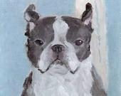ORIGINAL Boston Terrier Painting by KAZUMI on Canvas Sheet 6.5 x 7