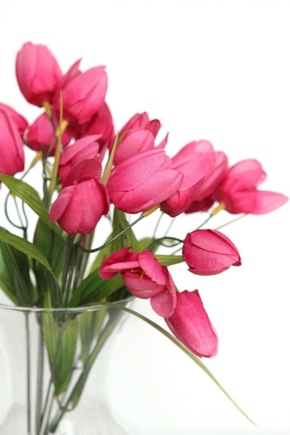 Hot Pink Tulip Bouquets Hot pink tulip bush - 14 quot  miniHot Pink Tulip Bouquets