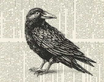black raven dictionary page print