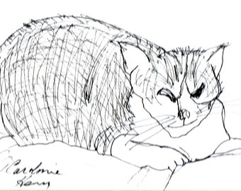 Ink drawing of seated cat