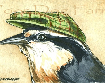 ACEO signed PRINT - Red-Breasted Nuthatch in a Hat