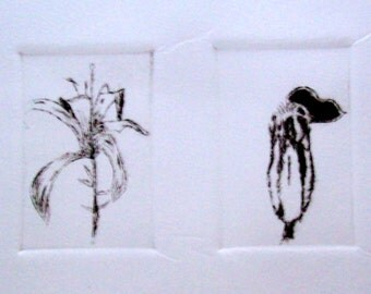 Flower Print Etching Matted