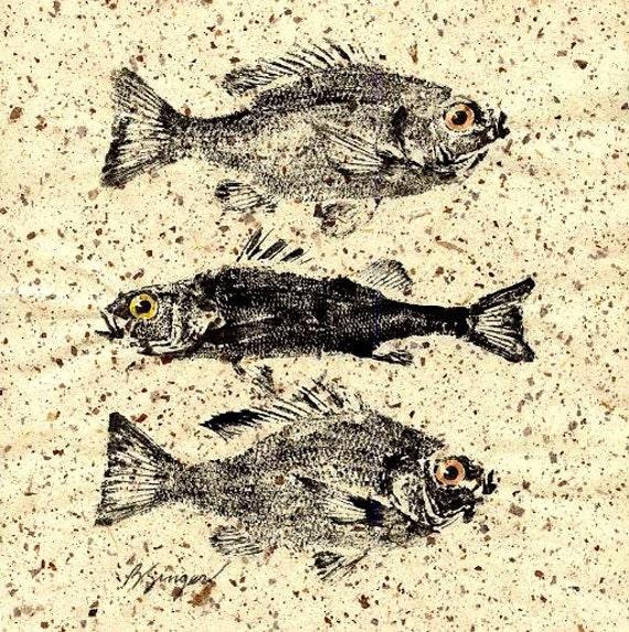 Fish rubbing (GYOTAKU) original 2 bluegills and a perch on natural paper