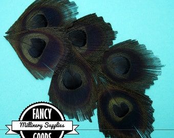 12 - Black - Peacock Feather - Eyes - Scallop Cut  - Leaves - Millinery -Fascinators