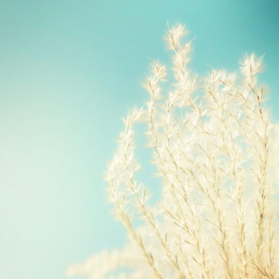 Winter photography, baby blue, gold, amber, silver, sunlight, dreamy, shabby chic, feminine, nature photogrpahy