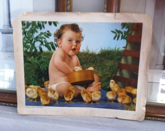 Summer Sale- sale -vintage BABY & CHICKS chromolithograph - 1930s