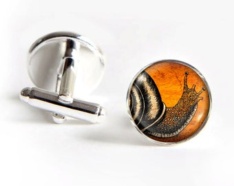 SNAIL Cufflinks silver 18mm cuff links Gifts for him