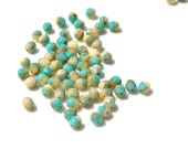 4mm Turquoise and Sand Faceted Fire Polish Czech GLass Beads   50