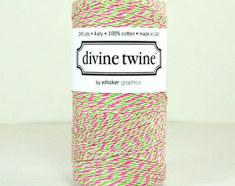 CLEARANCE Watermelon Mix Divine Twine Limited Edition - Baker's Twine