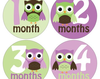 12 Monthly Baby Milestone Waterproof Glossy Stickers - Just Born - Newborn - Weekly stickers available - Design M033-03