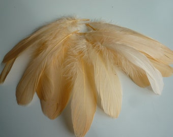 VOGUE GOOSE NAGOIRE Loose Feathers , Peach  Papaya  / 299 / Sale