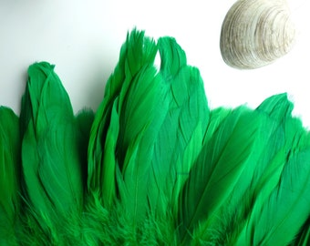 GOOSE COQUILLE FEATHERS ,  Two Tone Kelly Green  /   802