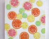 Fruit Slices, lemon slices, orange slices, lime art, grapefruit, oil painting