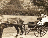 Antique Photograph Horse and Buggy Carriage