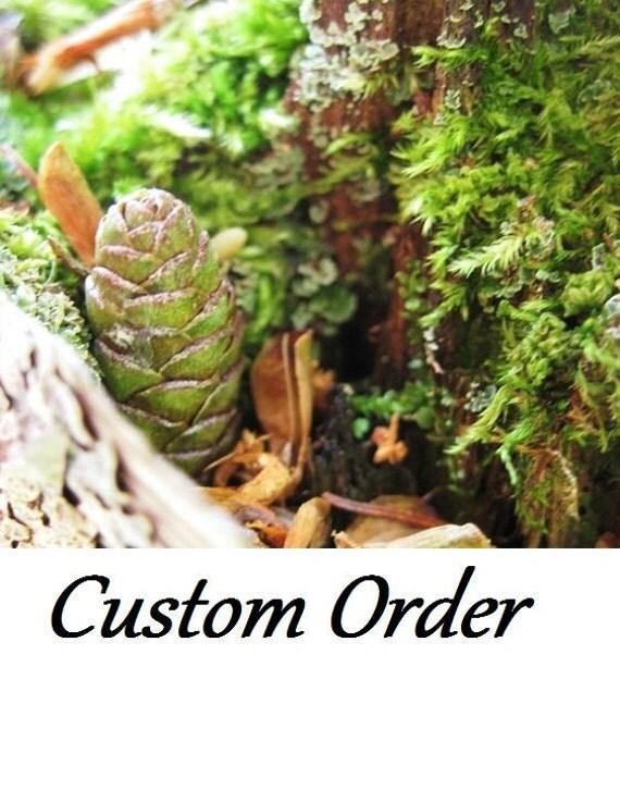 Custom Order for Michelle - ship end of February