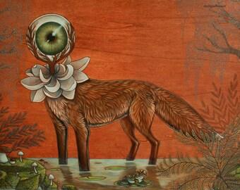 Seeker Fox  PRINT