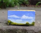 Mini landscape - roseymorris