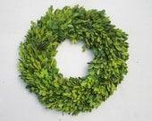 Boxwood Wreath 24 Inch Round