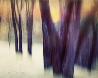 Winter Elegy 1 - Landscape photography - Tonalism - 8x12 Fine Art Print - WInter Sunset