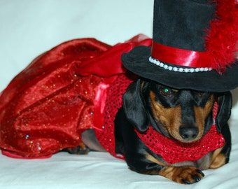 The Rare Ruby Dress as seen in the Movie Wiener Dog Nationals New Day NW Q13 Morning News and Evening Magazine King 5