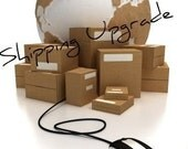 Get your Item Faster... Upgrade to US Priority Shipping
