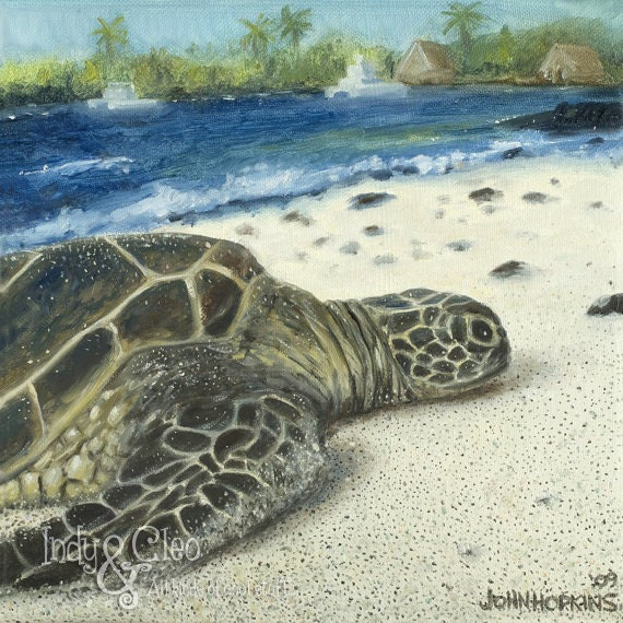 Sea Turtle Art Print Big Island SEA TURTLE Sealife by IndyAndCleo