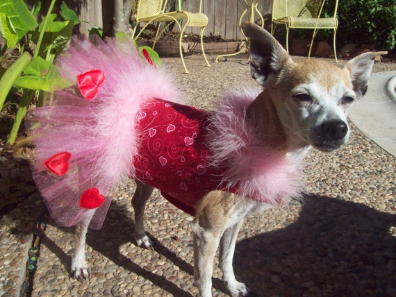 Sweet Valentine's Party Dress-Pink Maribou and Tulle Tutu-Custom Made