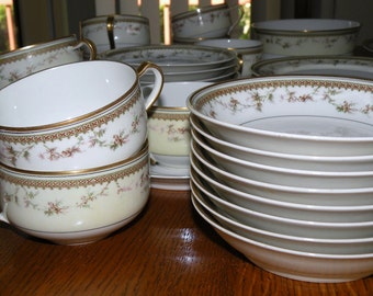 1920s LIMOGES Haviland FRANCE Porcelain Dinnerware set 37 Piece Set