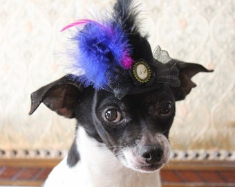 Black color   mini  hat with   feather and   flowers for dog or cat
