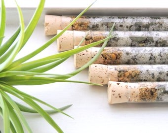 Organic & All Natural Chamomile Eucalyptus Herbal Bath Salt Test Tubes. (Thrive Bath Affirmations) Hostess, Spa, Eco, Luxury Gift Set