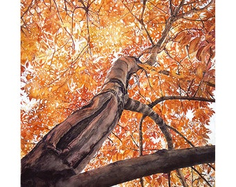 Fall Tree Watercolor Print- Realistic Painting-  Orange, Yellow Leaves- Award Winning Art- Nature, Vertical