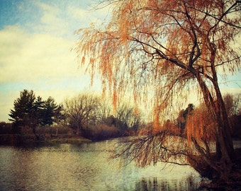 POND Original Color Art Photograph