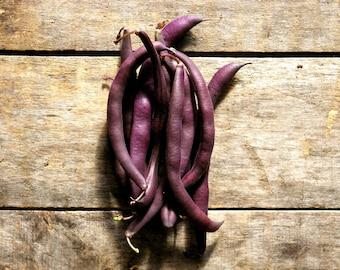 Royal Purple Bush Bean // organic vegetable seeds // heirloom seeds from our farm // organic gardening // summer planting
