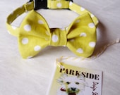Yellow and White Polka Dot Bow Tie Collar For Cats and Small Dogs