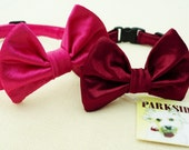 Special Event Bow Tie Collar For Cats and Small Dogs